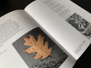 A slim paperback booklet open to a page with some text and an image of a leaf against a black background.
